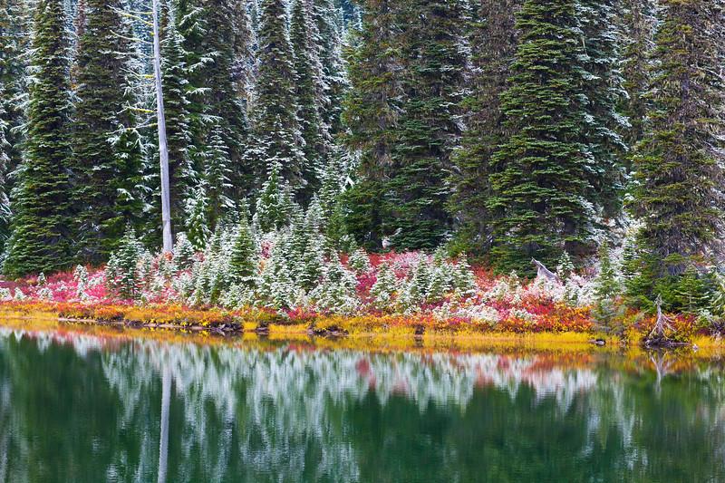 Mt Rainier Reflection Lakes Snow 101