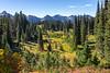 Mt Rainier Paradise Autumn 204