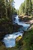 Mt Rainier Silver Falls 19