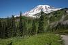 Mt Rainier Paradise 153