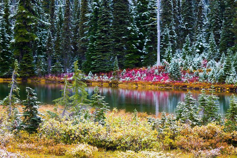 Mt Rainier Reflection Lakes Snow 109