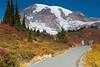 Mt Rainier Paradise 202