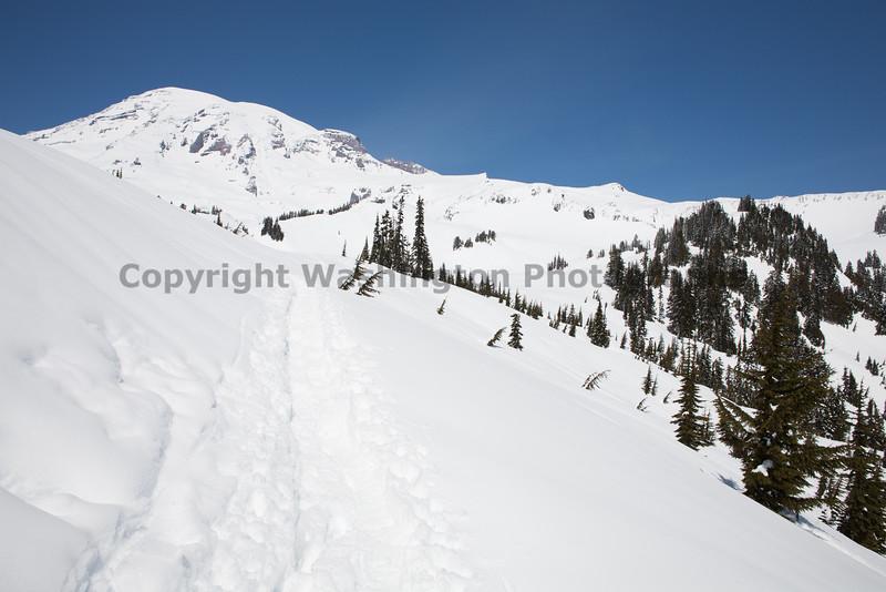 Mt Rainier Paradise Winter 108