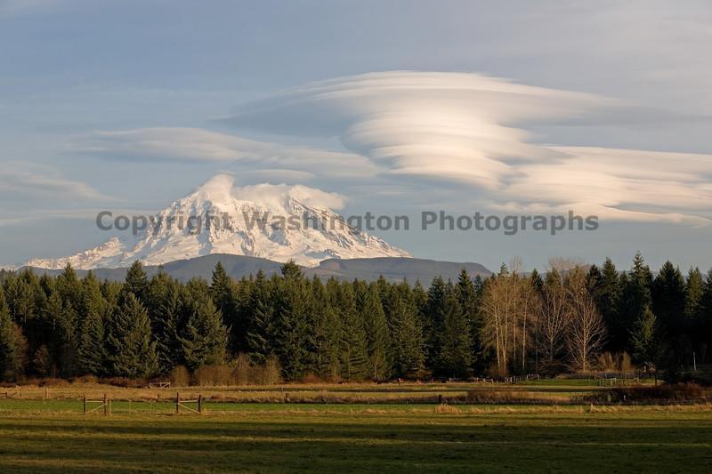 Mt Rainier from Dogwood Park 101