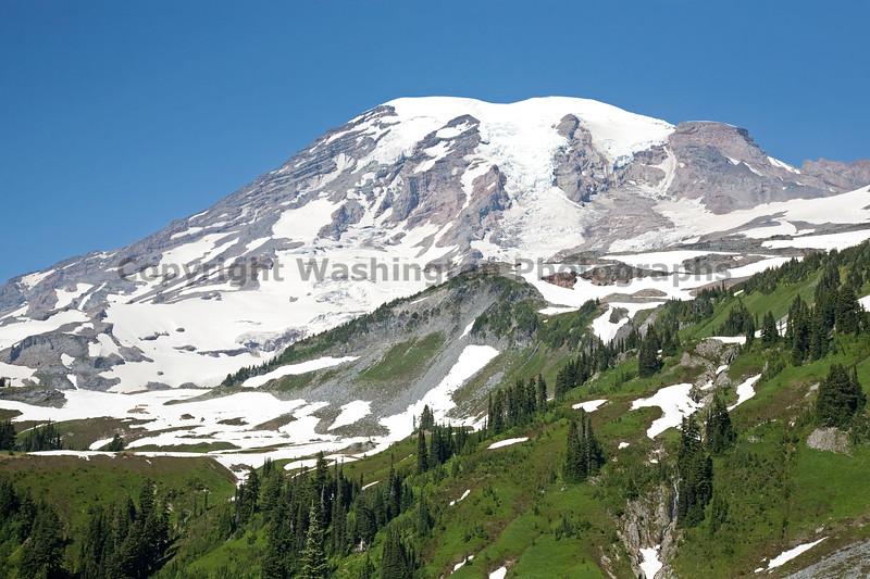 Mt Rainier Paradise 118
