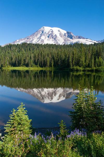 Mt Rainier Reflection Lakes 121