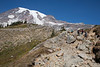 Mt Rainier Skyline Trail 103