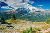 Mt Rainier Pinnacle Peak Trail 19