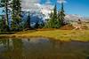 Mt Rainier Pinnacle Peak Trail 15