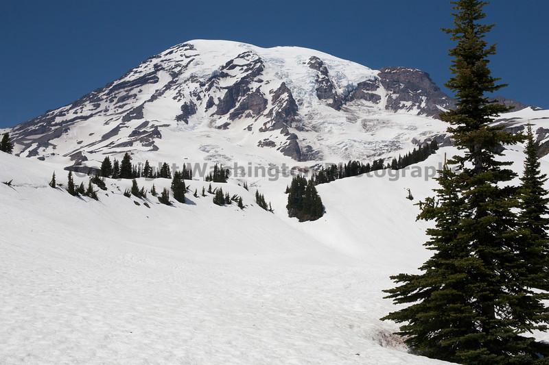 Mt Rainier Paradise Winter 145
