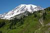 Mt Rainier Paradise 165