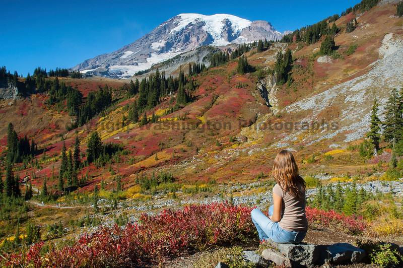 Mt Rainier Paradise 250