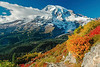 Mt Rainier Pinnacle Peak Trail 43