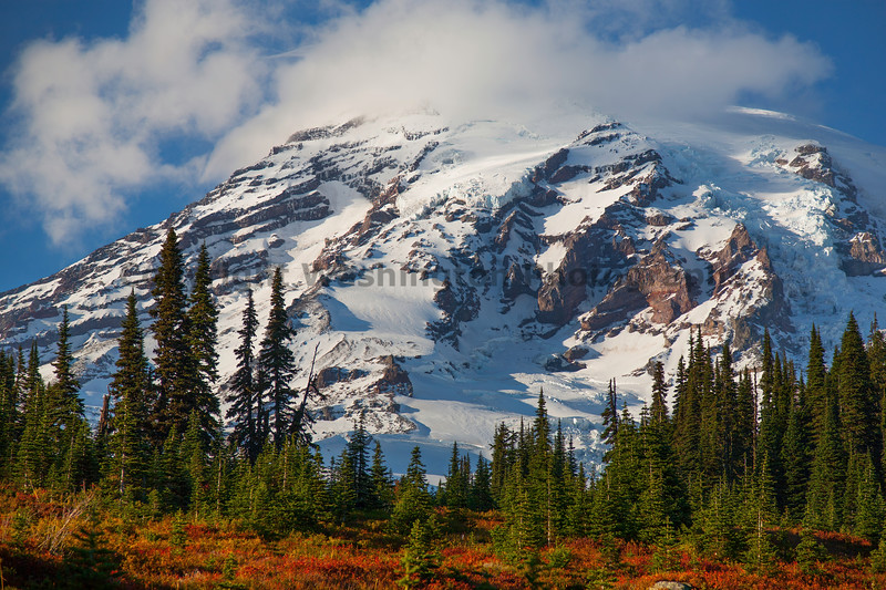Mt Rainier Paradise Snow 123
