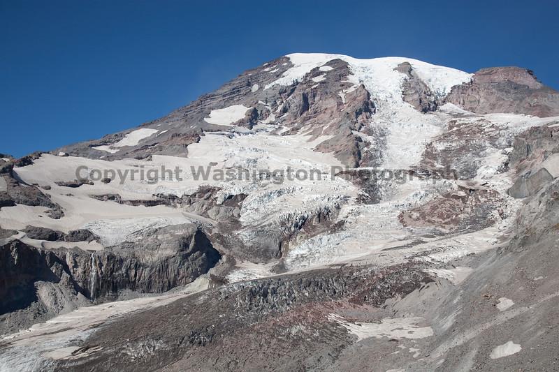 Mt Rainier Paradise Close Up 102