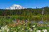 Mt Rainier Reflection Lakes 105