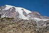 Mt Rainier Skyline Trail 105