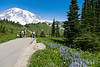 Mt Rainier Paradise 126