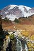 Mt Rainier Paradise 216