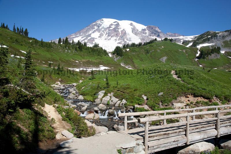 Mt Rainier Paradise 105