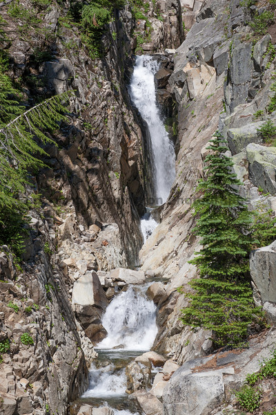 Mt Rainier Paradise 150
