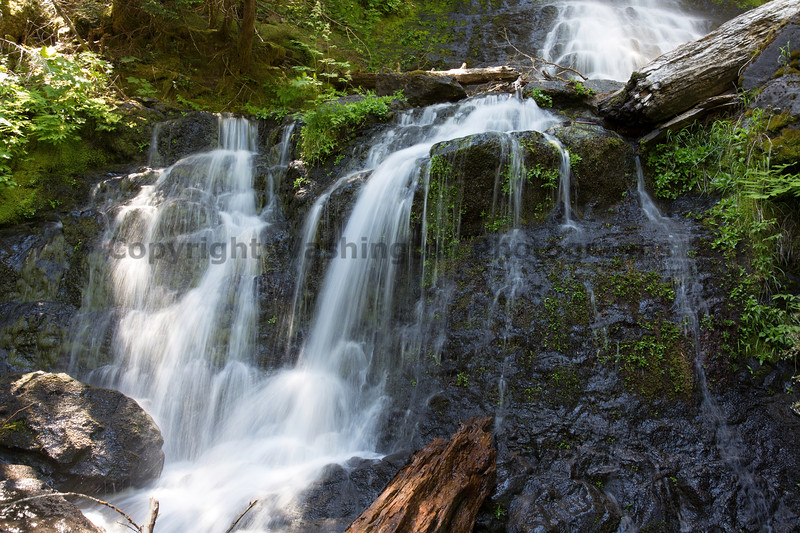 Mt Rainier Roadside Waterfall 15