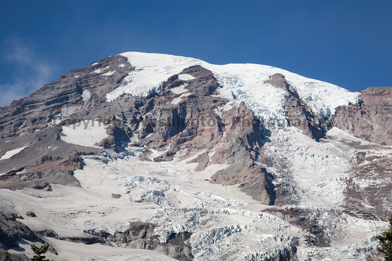Mt Rainier Paradise Close Up 113