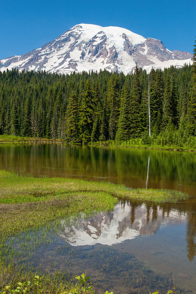 Mt Rainier Reflection Lakes 109