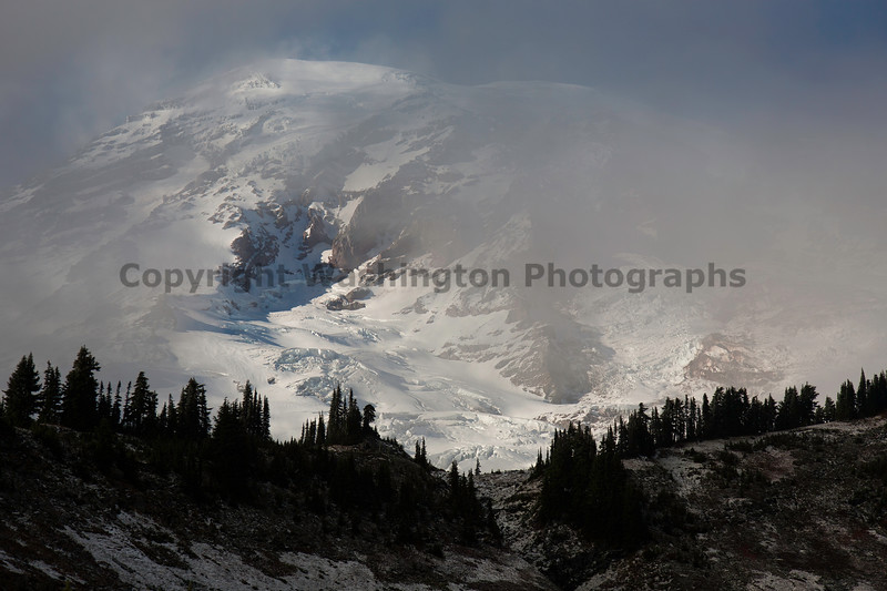 Mt Rainier Paradise Snow 111