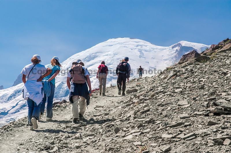 Mt Rainier Trail Burroughs Mountain 25