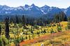 Mt Rainier Paradise Autumn 211