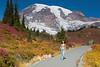 Mt Rainier Paradise 203