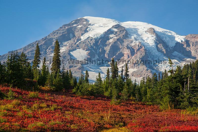 Mt Rainier Paradise Autumn 116