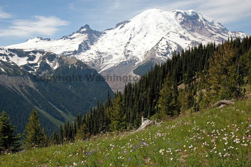 Mt Rainier Sunrise 118