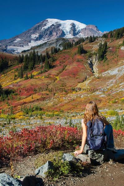 Mt Rainier Paradise 249