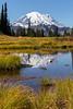 Mt Rainier Tipsoo Lake 20