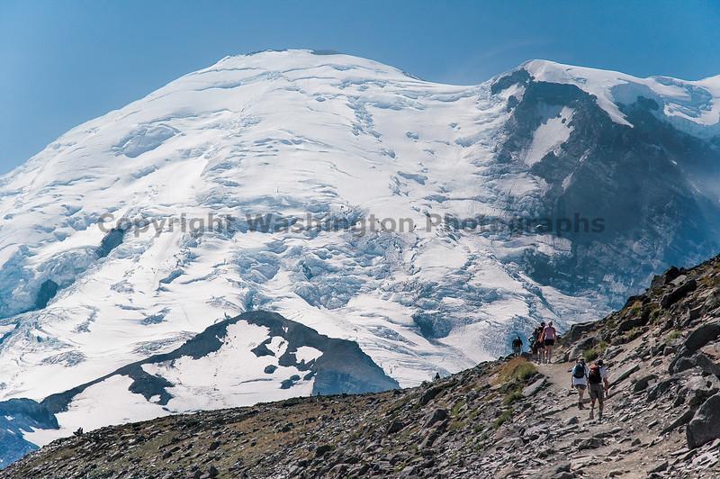 Mt Rainier Trail Burroughs Mountain 32