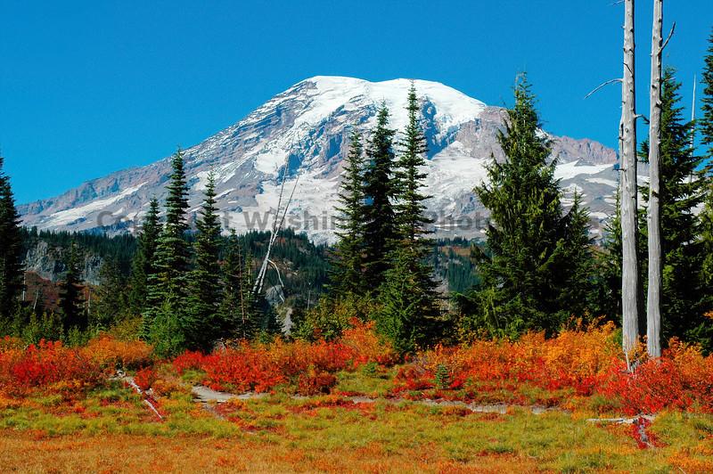 Mt Rainier Bench Lake Trail 41