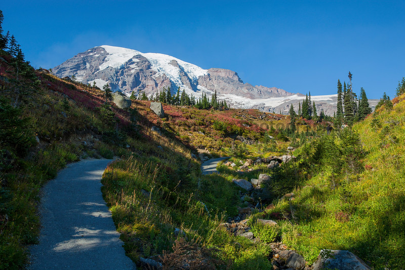 Mt Rainier Paradise Autumn 106