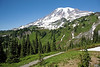 Mt Rainier Paradise 115