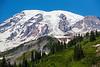 Mt Rainier Paradise 163