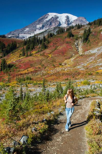 Mt Rainier Paradise 246