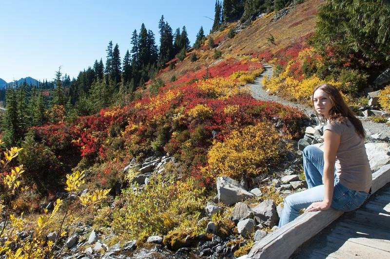 Mt Rainier Paradise 231