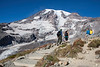 Mt Rainier Skyline Trail 106