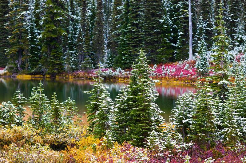 Mt Rainier Reflection Lakes Snow 108