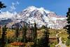 Mt Rainier Paradise Autumn 241