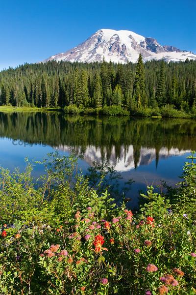 Mt Rainier Reflection Lakes 125