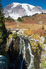 Mt Rainier Paradise 213