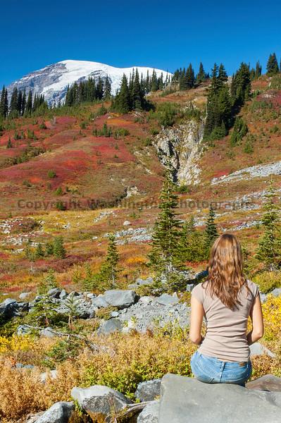 Mt Rainier Paradise 241
