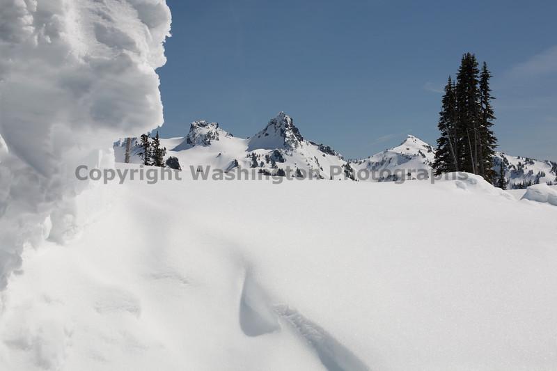 Mt Rainier Paradise Winter 131